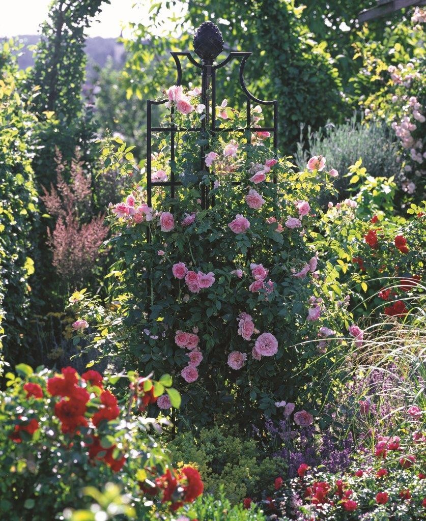 Rose Obelisks adorable rose features from Classic Garden Elements Ireland