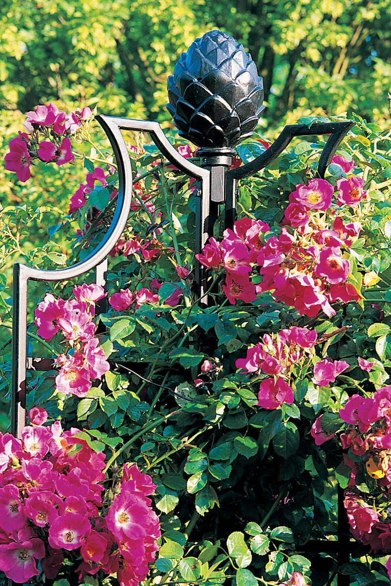 rose obelisks garden obelisks classic garden elements. Black Bedroom Furniture Sets. Home Design Ideas