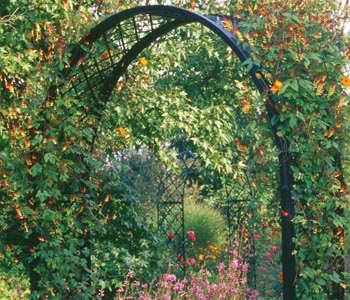 These garden arches with their clear and simple features make an elegant entrance.