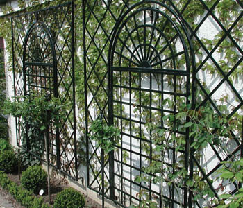 Maintenance free steel wall trellis adds character and beauty to a vacant dull wall.